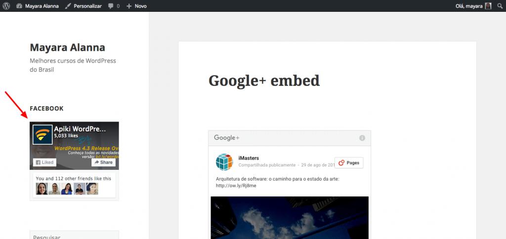 Page Plugin sendo exibida por meio do widget de texto do WordPress