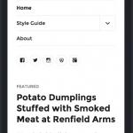 Twenty Sixteen - Mobile menu aberto