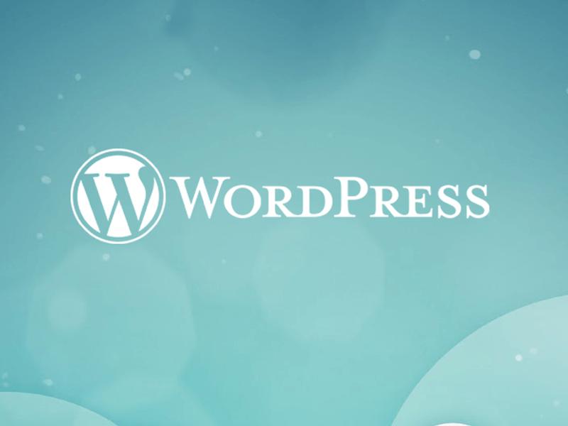 Os recursos para desenvolvedores do WordPress que são pouco usados